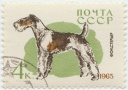 182 Fox terrier 1965 Rusia 4k Print run 4000.jpg