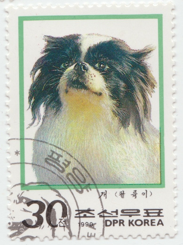 Japanese Chin - Dogs on stamps - Timbre cu caini