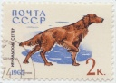 184 Irish Setter 1965 Rusia 2k Print run 4000.jpg