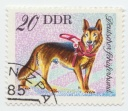 163 German Shepard 1976 20 Pf DDR German Democratic Republic Service And Use Dogs.jpg