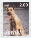 180 Jewish 1999 2 Irish Terrier.jpg