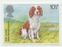 192 Great Britain Welsh Springer Spaniel 10 12 P 1979 Elisabeth II.jpg
