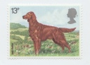 194 Irish Setter 13p Great Britain 1979.jpg