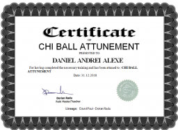 chi Ball.png