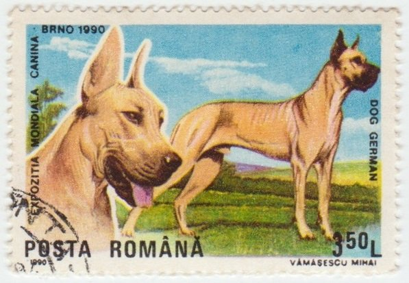 Posta Romana Dog German 1990 3,5L.jpg